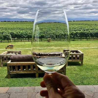 Mendoza Wine Paradise