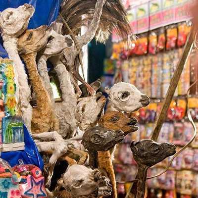 Witches Market La Paz